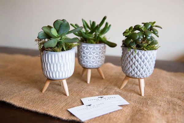 Plant_subscription